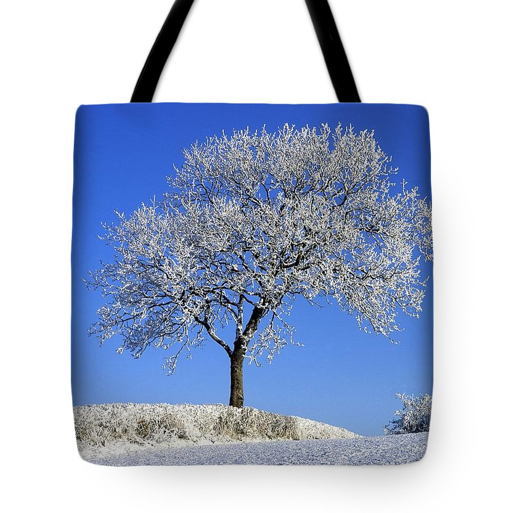 Down Tote Bag featuring the photograph Tree In Winter, Co Down, Ireland by The Irish Image Collection