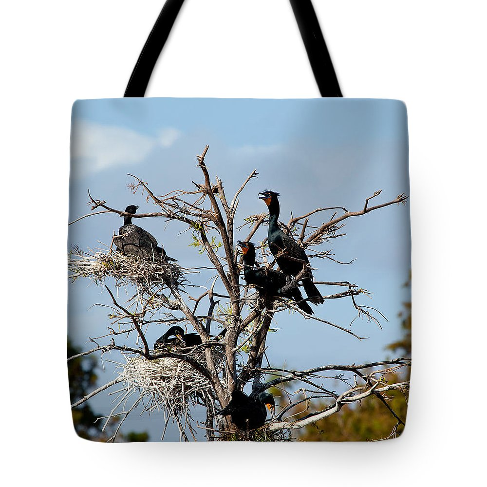 Florida Cormorants Tote Bag featuring the photograph Tree Of Florida Cormorants by Michelle Constantine