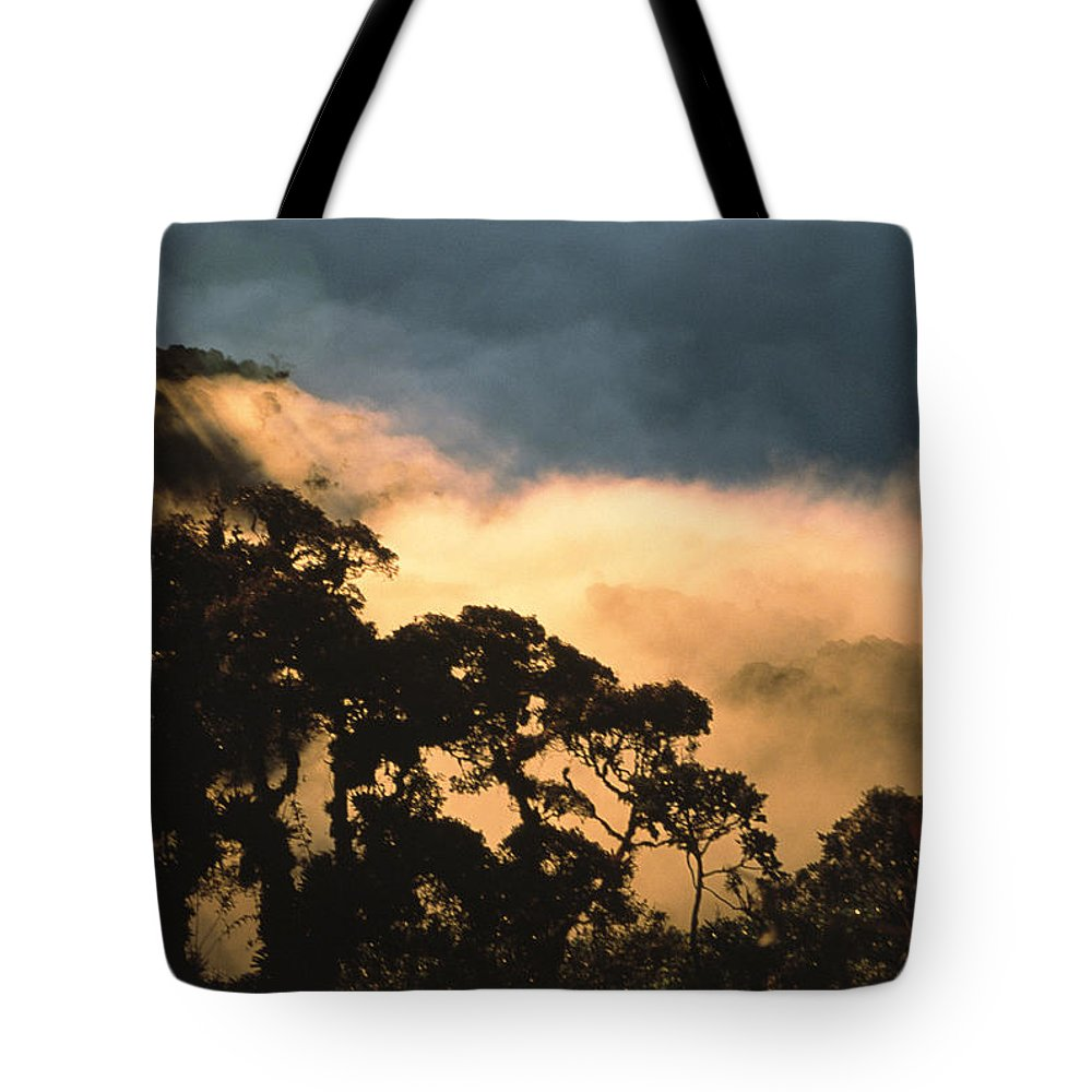 South America Tote Bag featuring the photograph Trees And Mountaintops Above The Clouds by David Evans