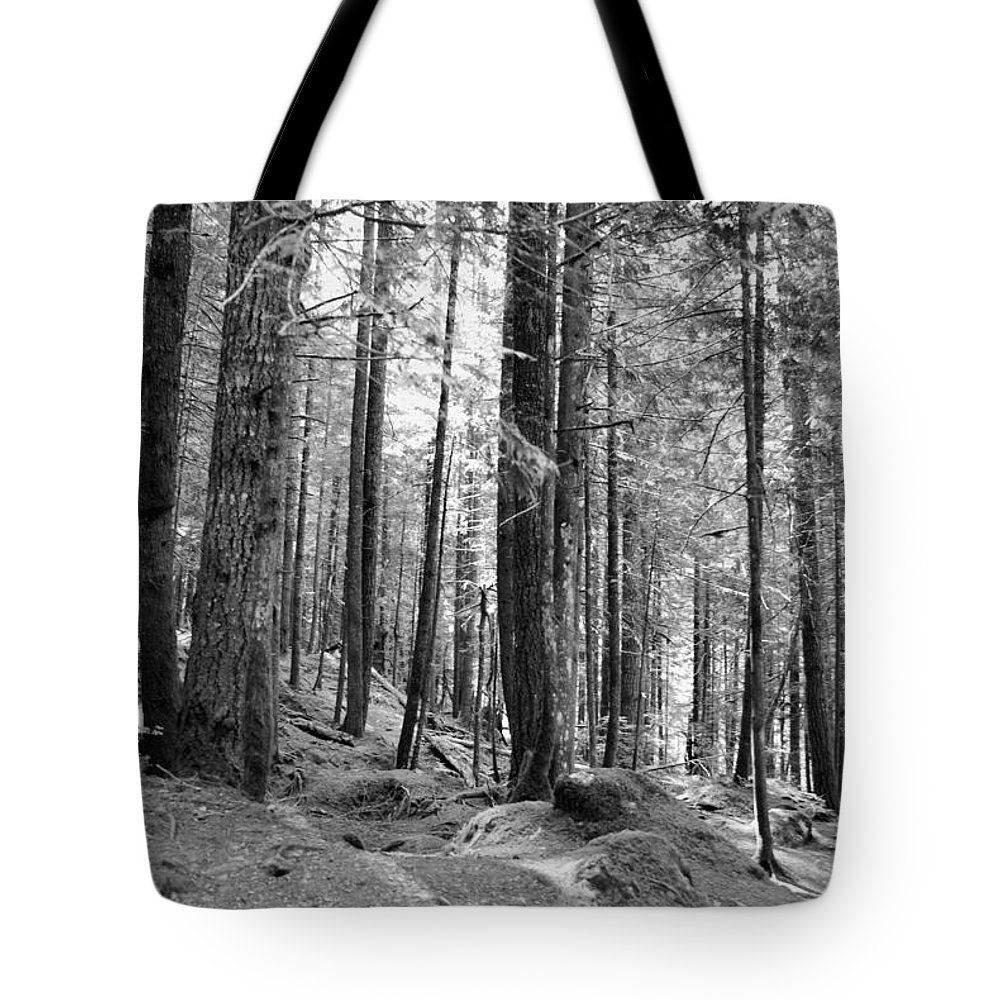 Trees Tote Bag featuring the photograph Trees by Michael Merry