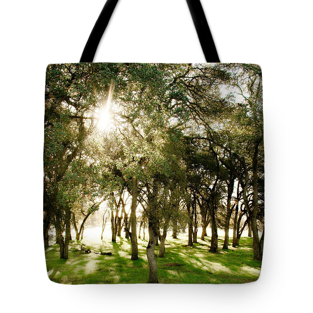 Trees Tote Bag featuring the photograph Trees by Sally Bauer