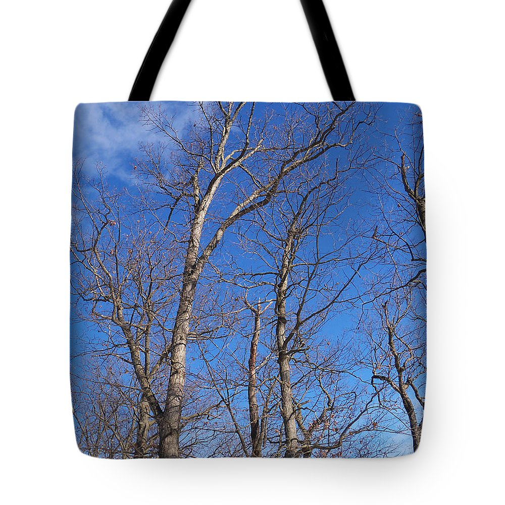 Trees Tote Bag featuring the photograph Trees With Cotton Cloud by Corinne Elizabeth Cowherd
