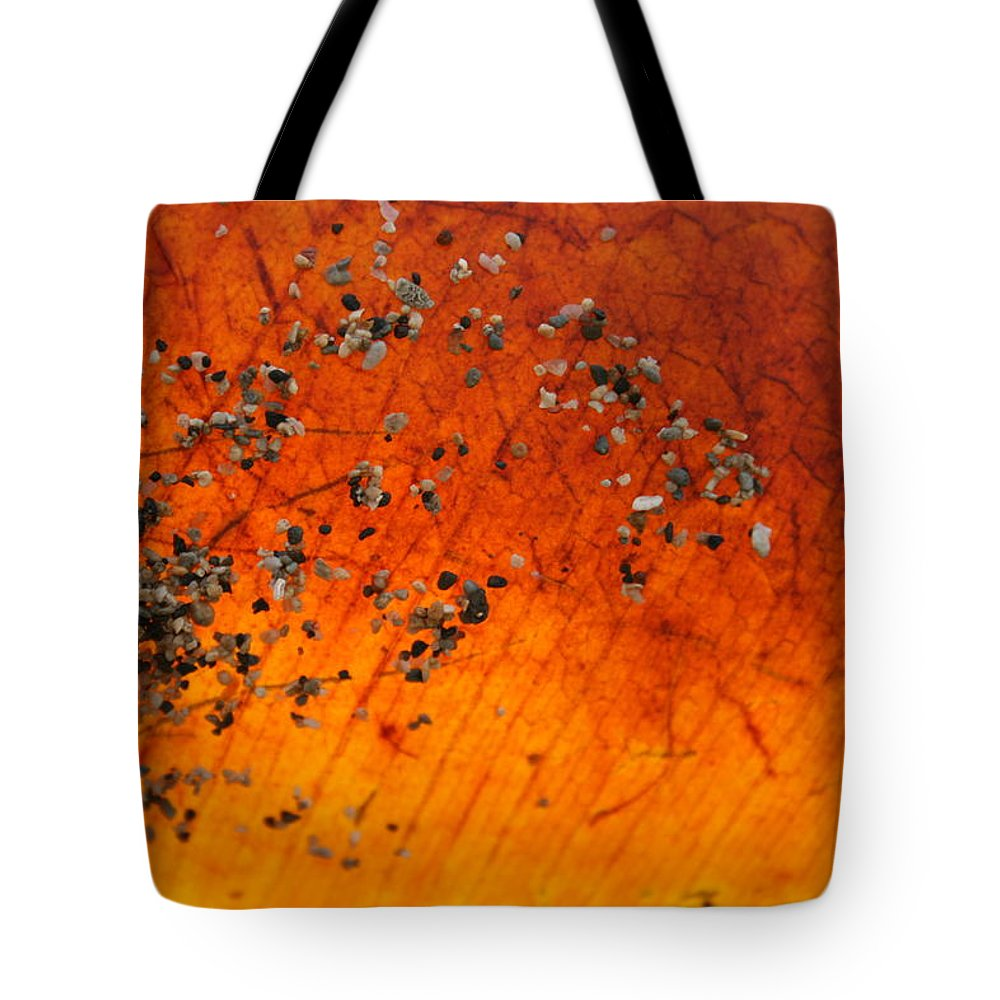 Jennifer Bright Art Tote Bag featuring the photograph Tropical Almond Leaf With Sand 1 by Jennifer Bright