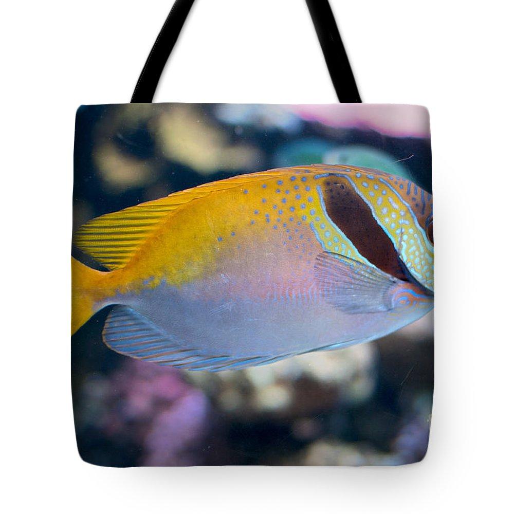 Aquarium Tote Bag featuring the digital art Tropical Fish by Carol Ailles