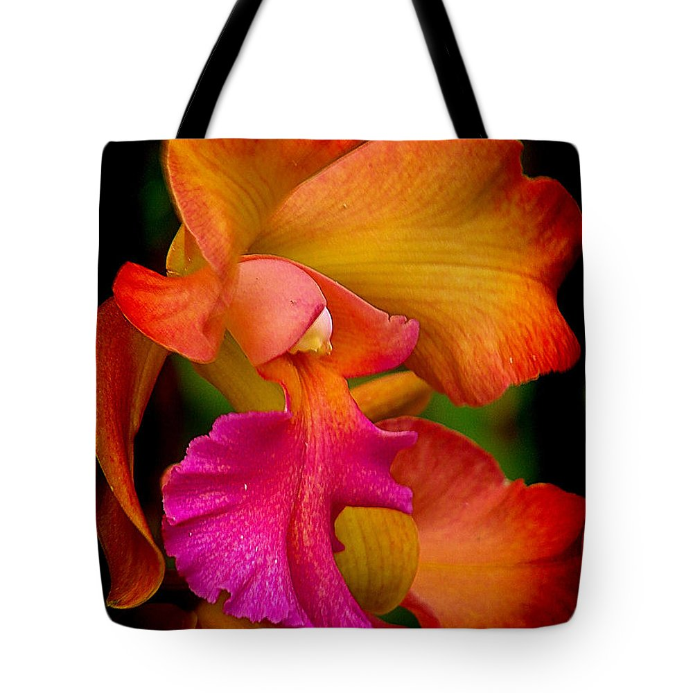 Orchid Tote Bag featuring the photograph Tropical Splendor by Blair Wainman