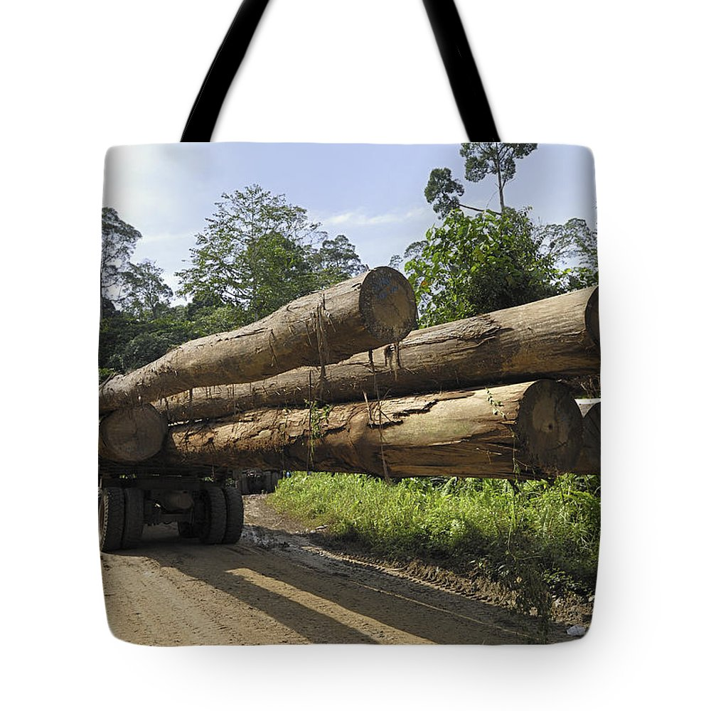 Mp Tote Bag featuring the photograph Truck With Timber From A Logging Area by Thomas Marent