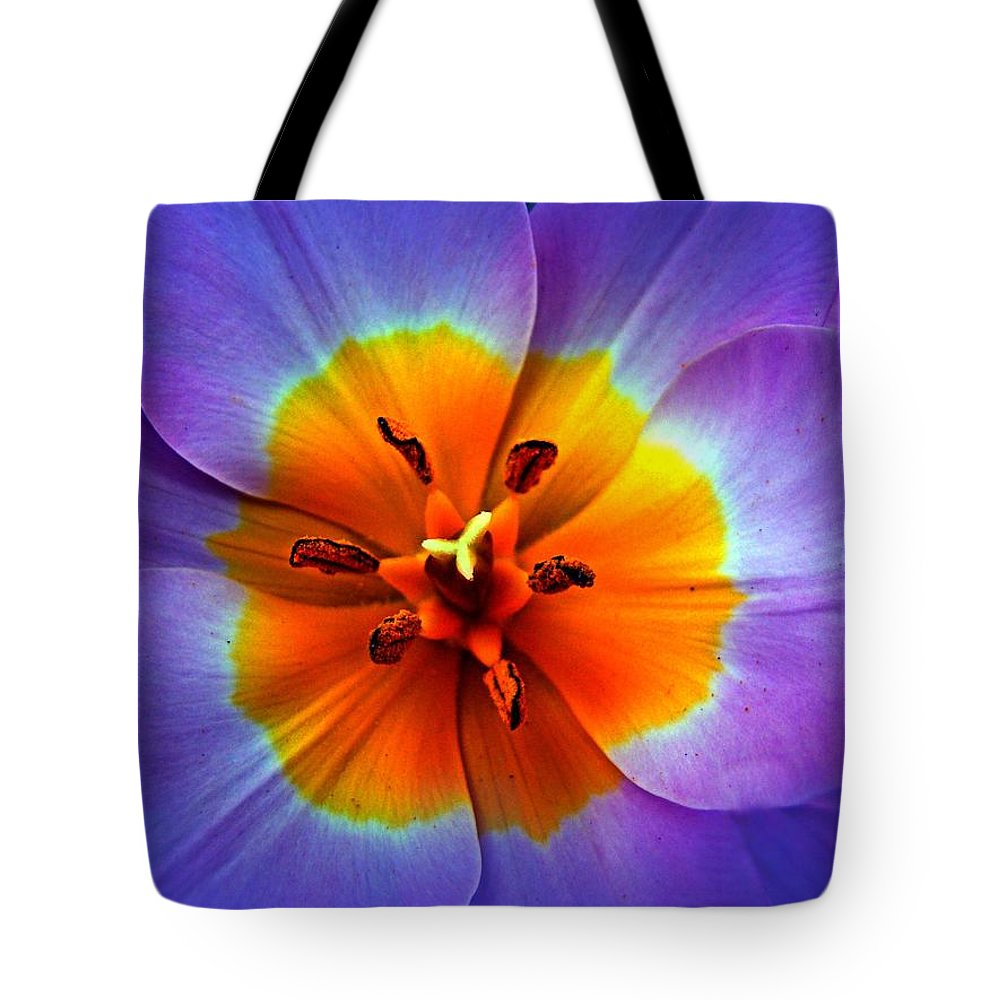 Tulip Tote Bag featuring the photograph Tulip At Sunset Macro by Nick Kloepping