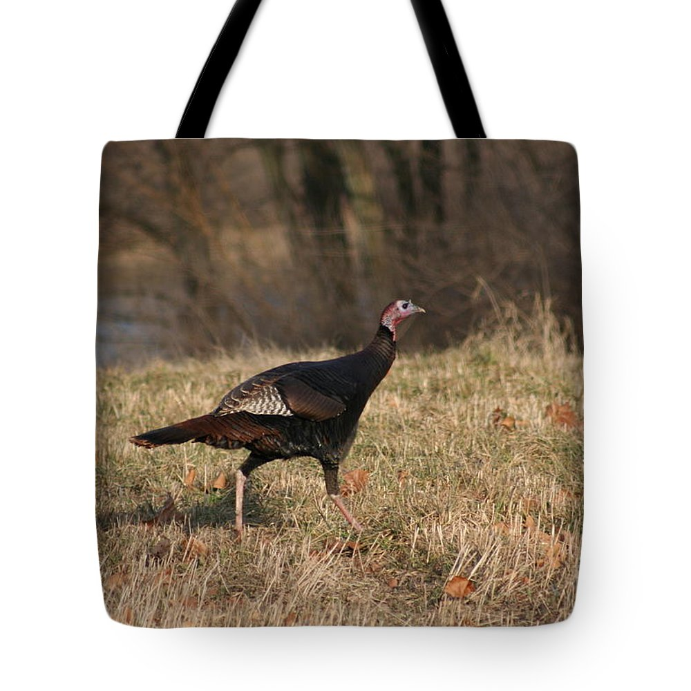 Turkey Tote Bag featuring the photograph Turkey Run by Roger Look