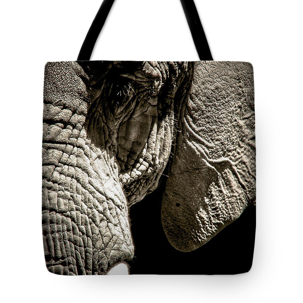 Elephant Tote Bag featuring the photograph Tusk by Ken Marsh
