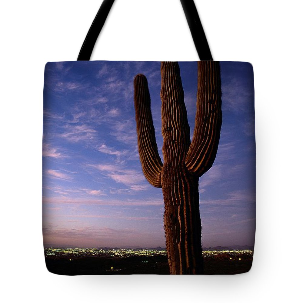 South Mountain Park Tote Bag featuring the photograph Twilight View Of A Saguaro Cactus by Phil Schermeister