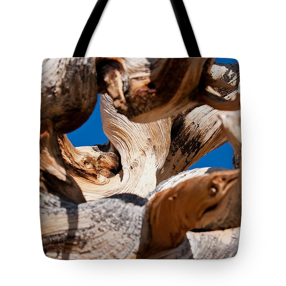 Ancient Tote Bag featuring the photograph Twisted Bristlecone Pine by Olivier Steiner