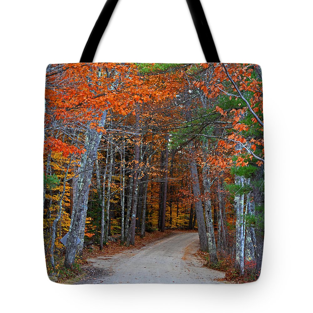 Foliage Tote Bag featuring the photograph Twisting Road Of Fall by Lloyd Alexander