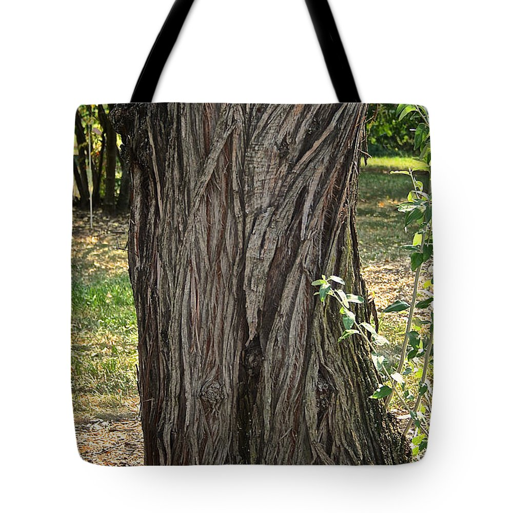 Tree Tote Bag featuring the photograph Twisting Trunk by Susan Herber