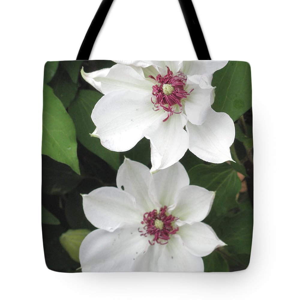 White Tote Bag featuring the photograph Two Friends by Wayne Potrafka