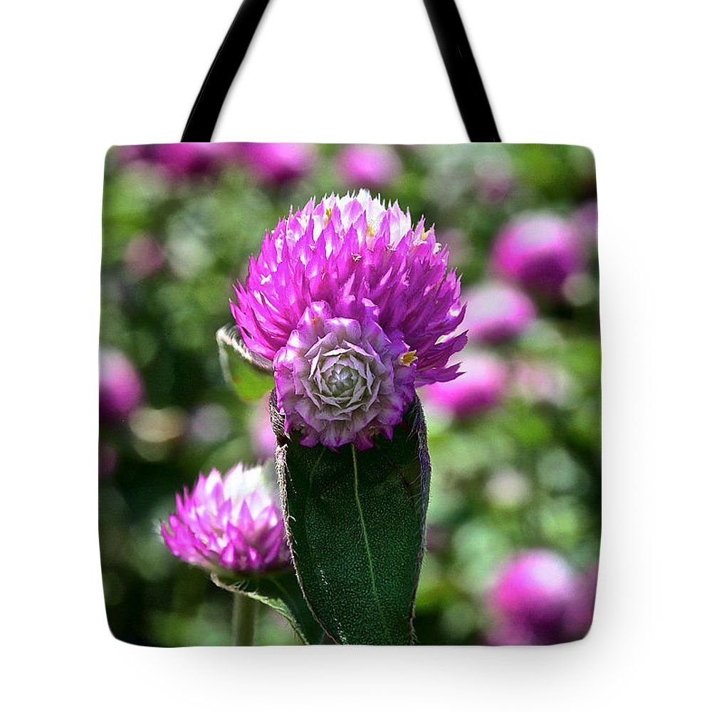 Outdoors Tote Bag featuring the photograph Two Heads Are Better Than One by Susan Herber