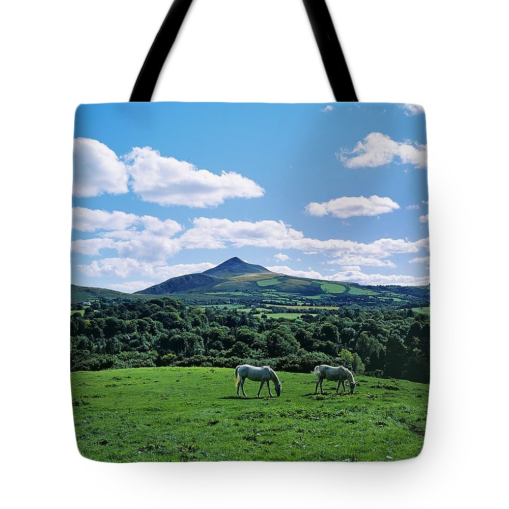 Animal Themes Tote Bag featuring the photograph Two Horses Grazing In A Field by The Irish Image Collection