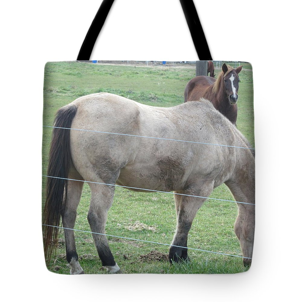 Horse Tote Bag featuring the photograph Two Horses Up Front by Tina M Wenger