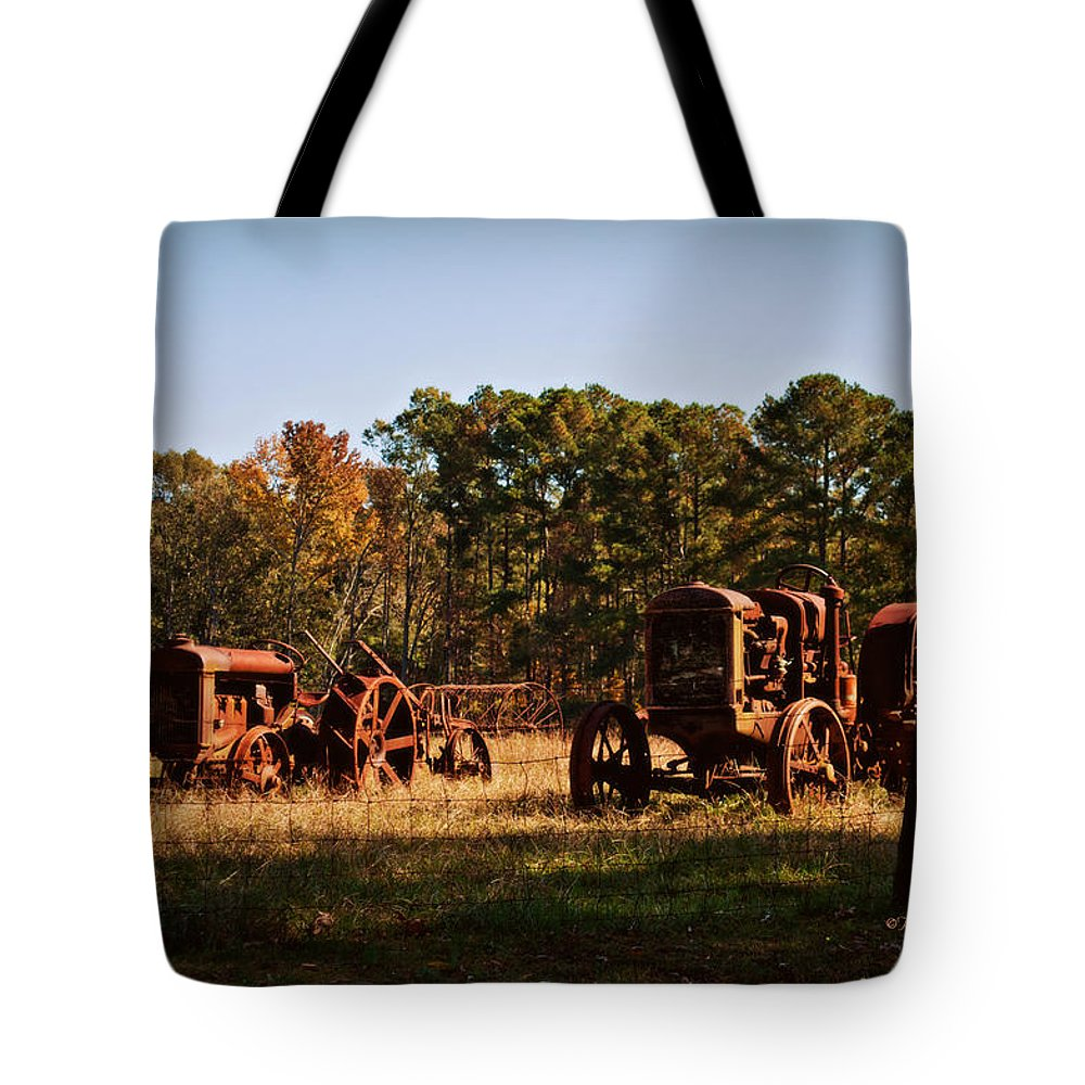 Two Tote Bag featuring the photograph Two Old Friends by Paulette B Wright
