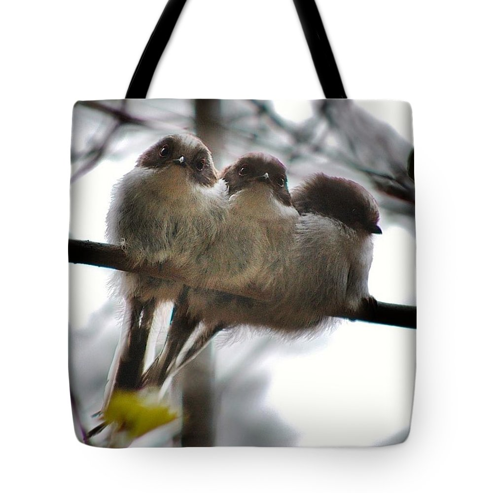 Images Of Scotland Tote Bag featuring the photograph Two's Company by Gavin Macrae