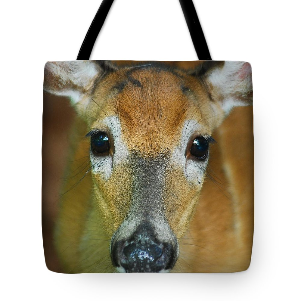Animal Tote Bag featuring the photograph Up Close 7532 by Michael Peychich