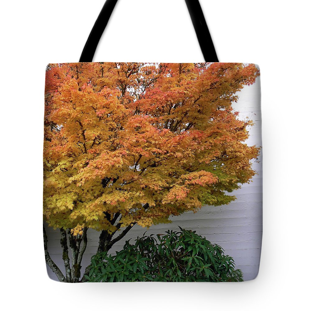 Maple Tote Bag featuring the photograph Urban Fall by Pamela Patch