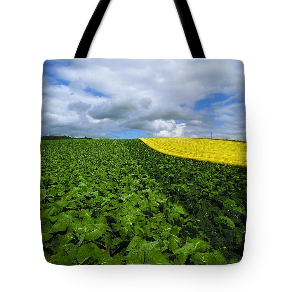 Countryside Tote Bag featuring the photograph Vegetables, Cabbages by The Irish Image Collection