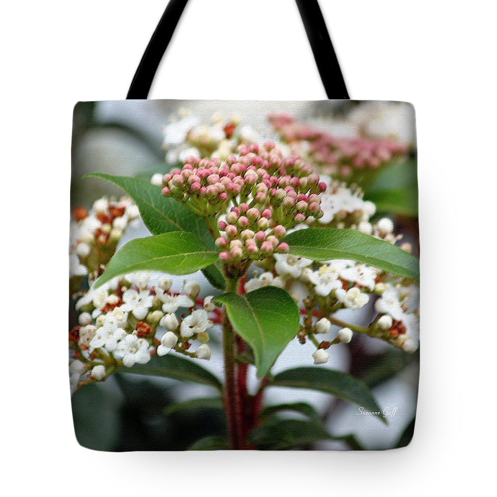 Viburnum Tote Bag featuring the photograph Viburnum Tinus Spring Bouquet by Suzanne Gaff