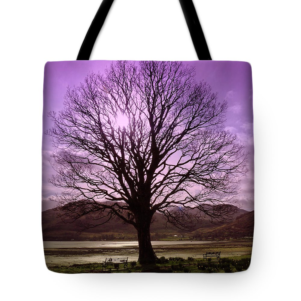 Tree Tote Bag featuring the photograph Village Green Tree by Lynn Bolt