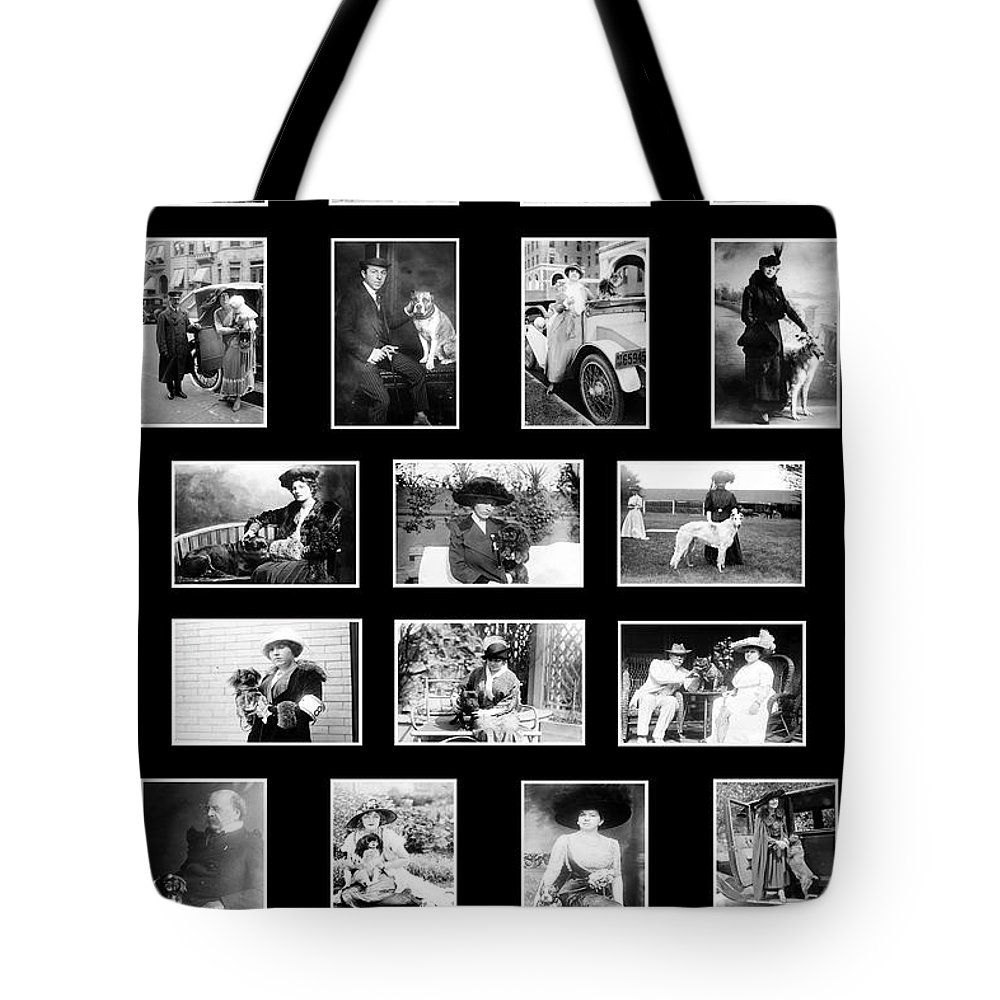 Dogs Tote Bag featuring the photograph Vintage Dogs by Andrew Fare