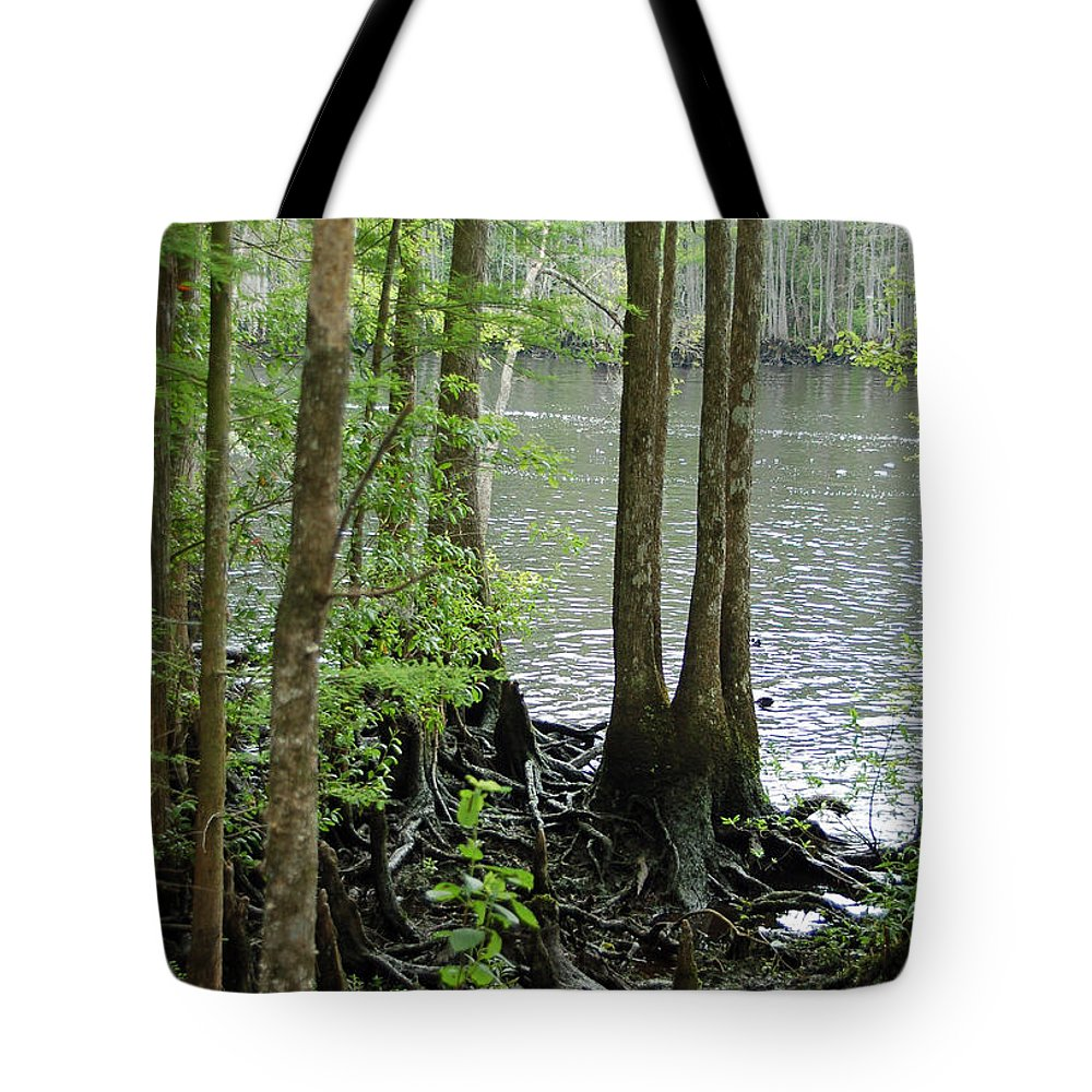 Waccamaw River Tote Bag featuring the photograph Waccamaw View II by Suzanne Gaff