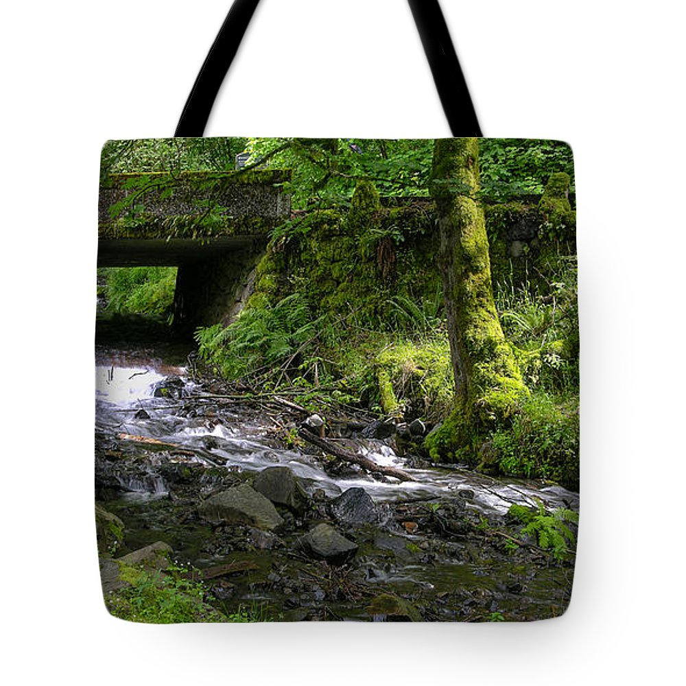 Wahkeena Falls Tote Bag featuring the photograph Wahkeena Falls Three by Mike Penney