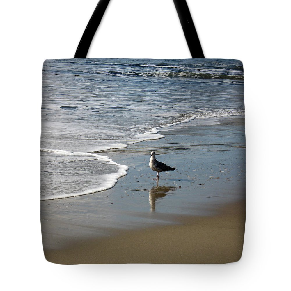 Sea Tote Bag featuring the photograph Waiting For Lunch On Shore by Carlene Salazar