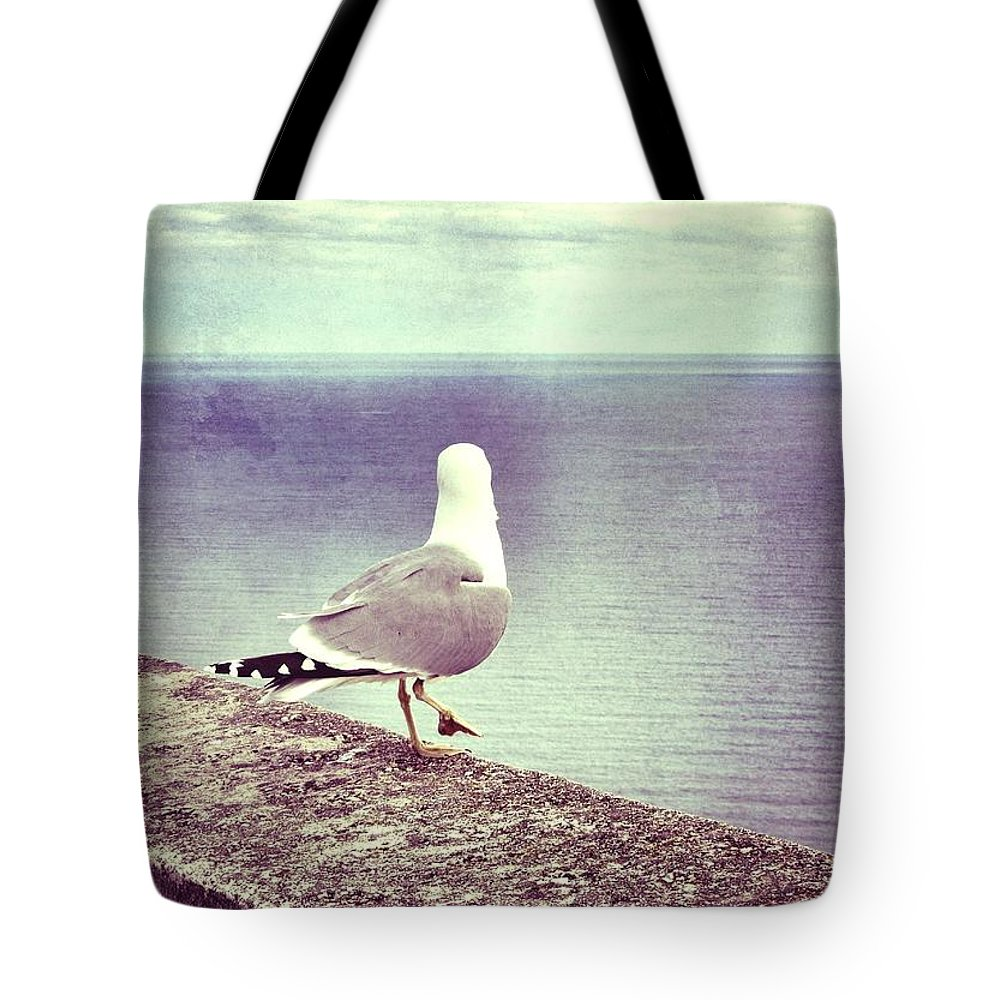 Seagull Tote Bag featuring the photograph Waiting... by Marianna Mills