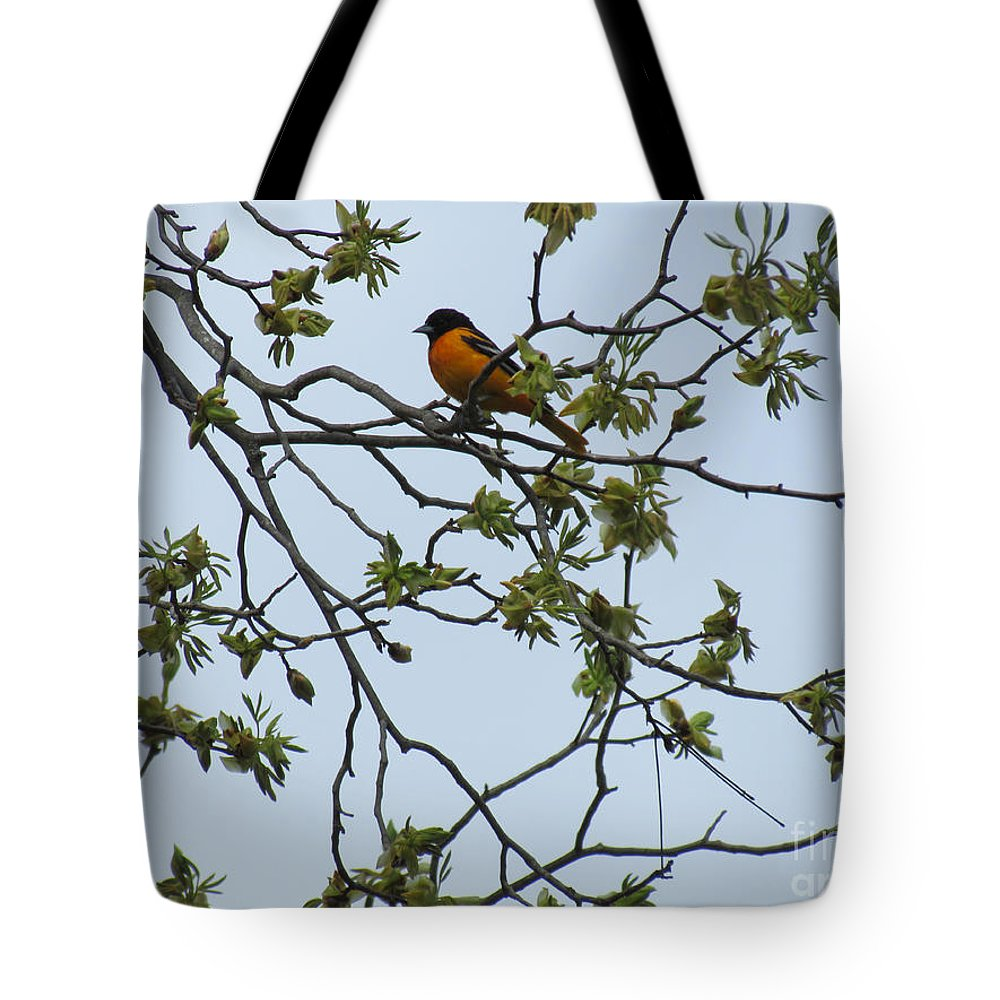 Bird Tote Bag featuring the photograph Waiting by Randi Shenkman