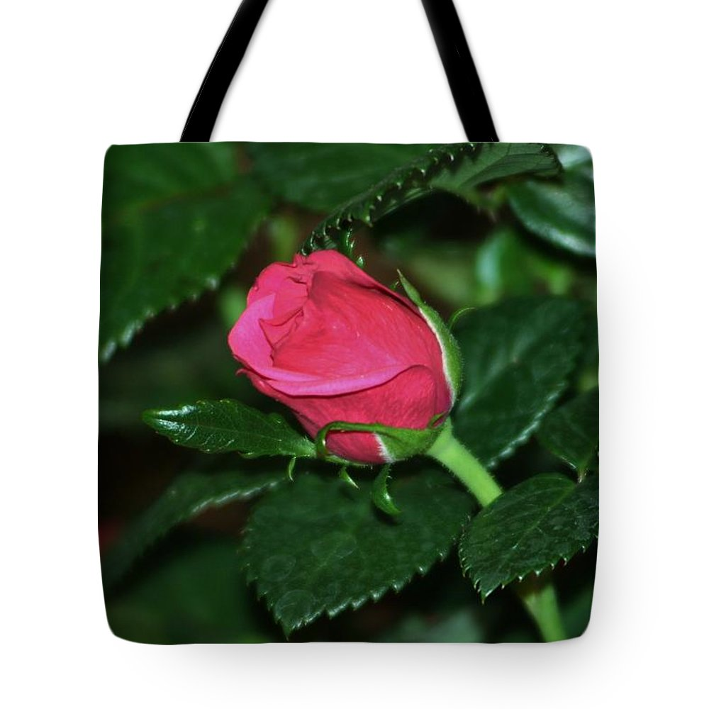 Tote Bag featuring the photograph Waking by Barbara S Nickerson