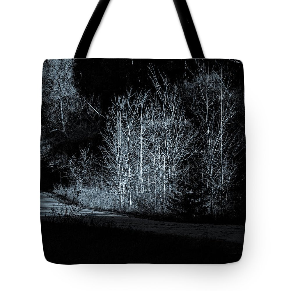 Autumn Tote Bag featuring the photograph Warming Light On An Autumn Morning by Thomas Young