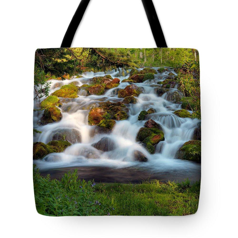 Award Winning Art Tote Bag featuring the photograph Wasatch Range Cascade by Leland D Howard