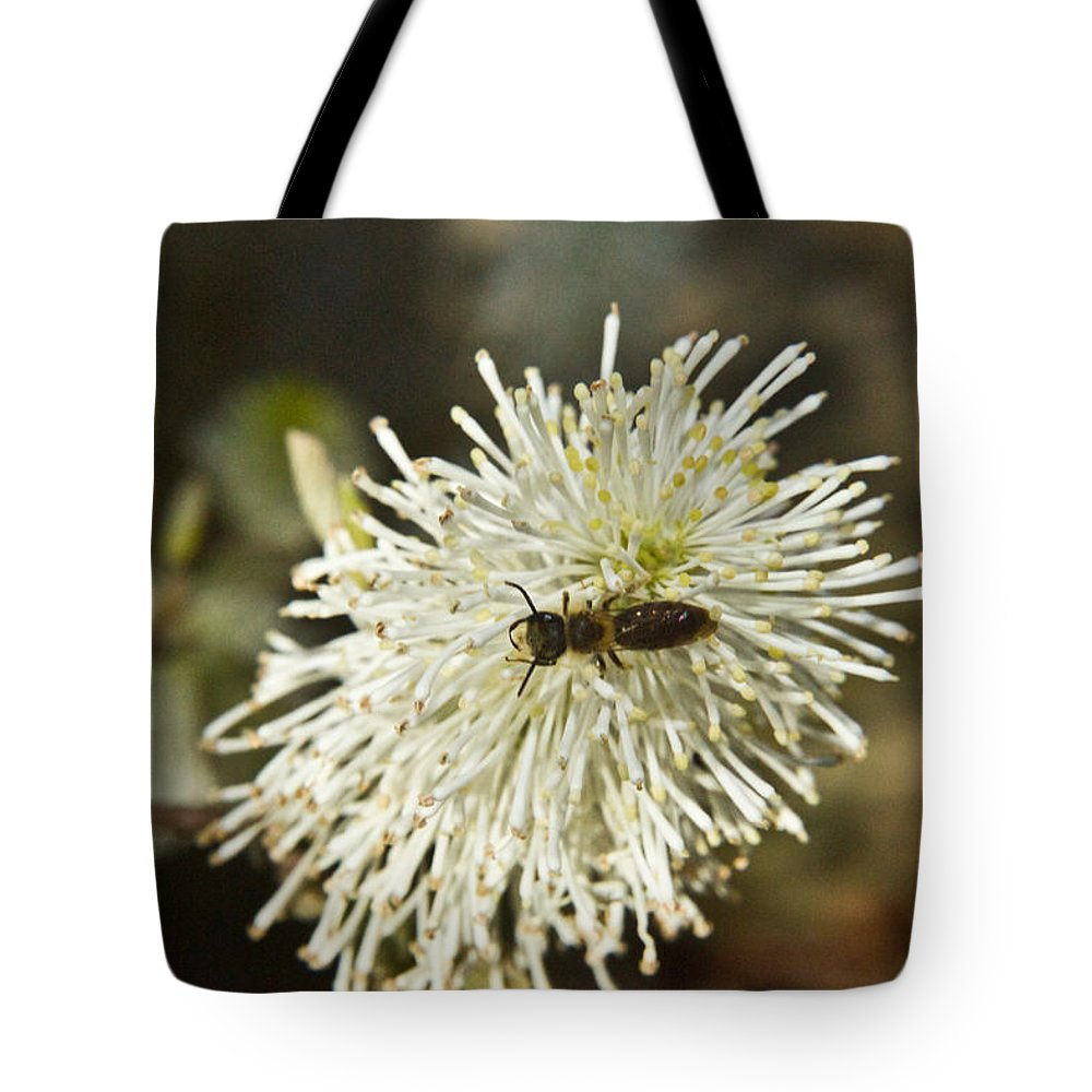 Fothergilla Tote Bag featuring the photograph Wasp On Fothergilla 5 by Douglas Barnett