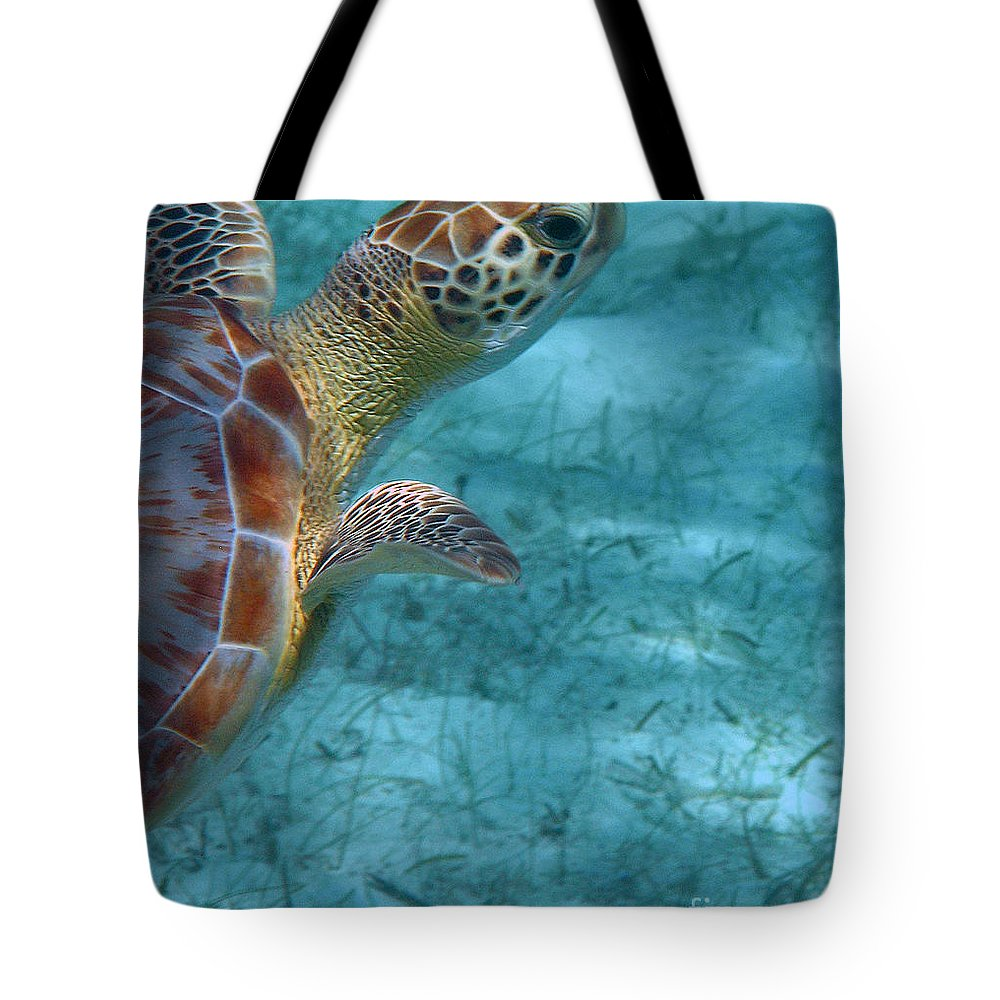 Sea Turtle Tote Bag featuring the photograph Watching You Watching Me by Li Newton