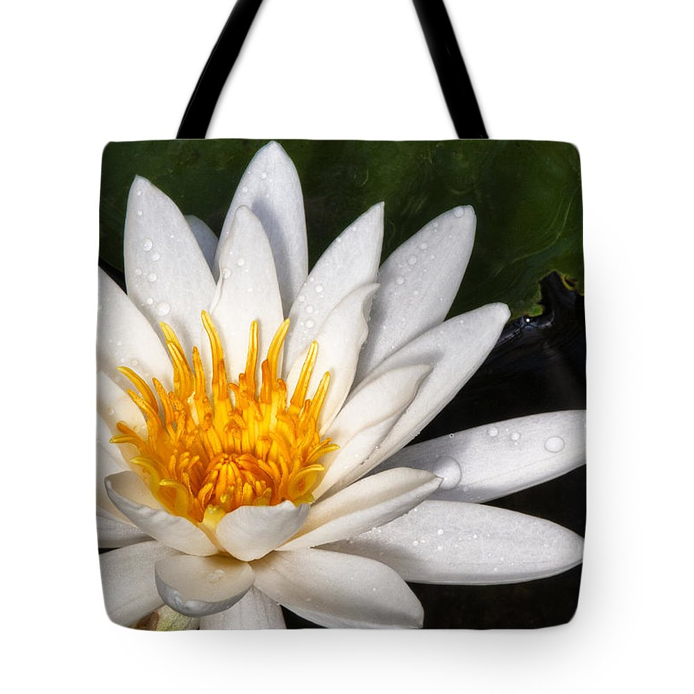 Flower Tote Bag featuring the photograph Water Lilly by Javier Barras