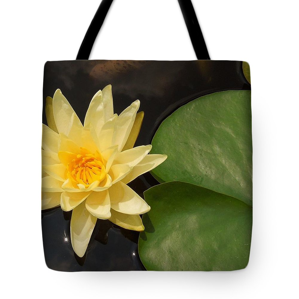 Water lily flower with a lily pad tote bag for sale by chad and yellow tote bag featuring the photograph water lily flower with a lily pad by chad and izmirmasajfo