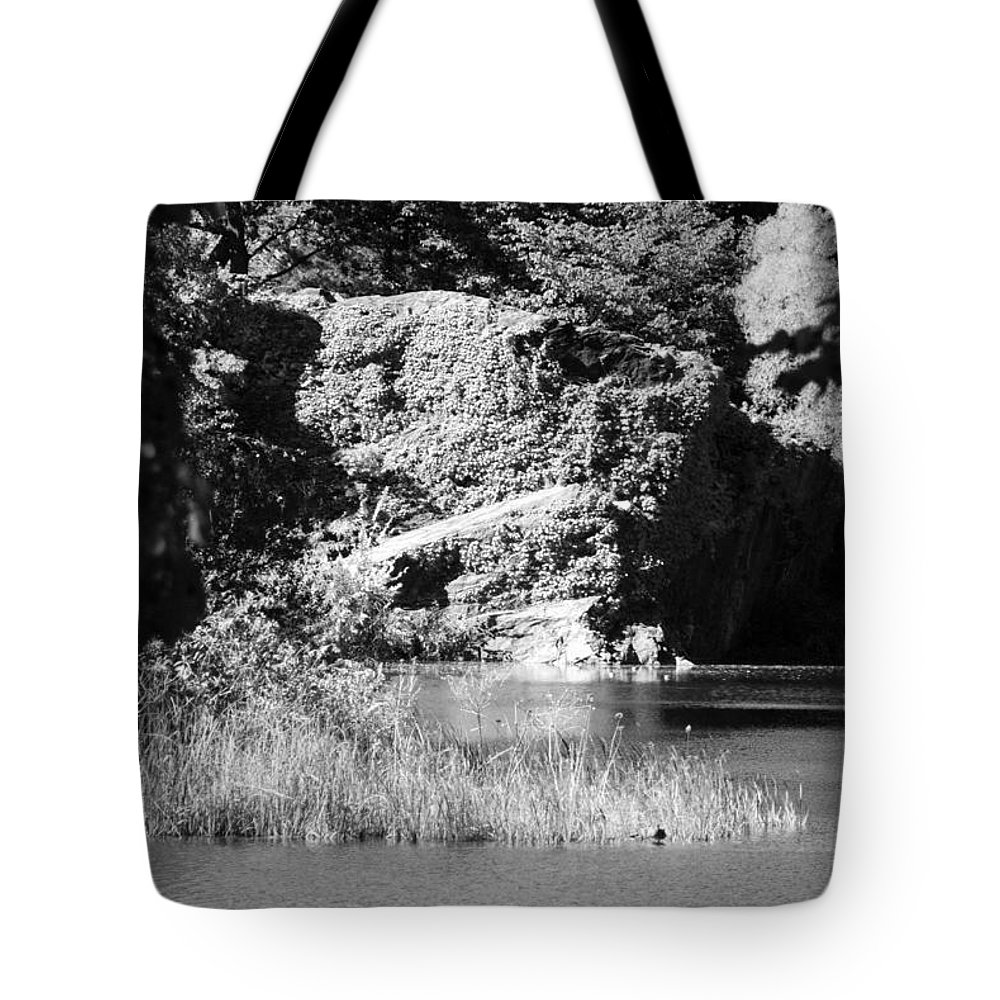 Central Park Tote Bag featuring the photograph Water Rock Flower In Central Park by Rob Hans