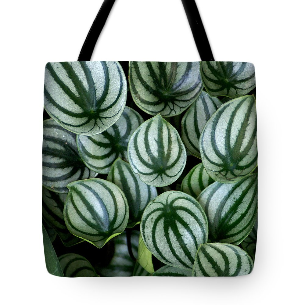 Flowers Tote Bag featuring the photograph Watermelon Leaves by Ben Upham III