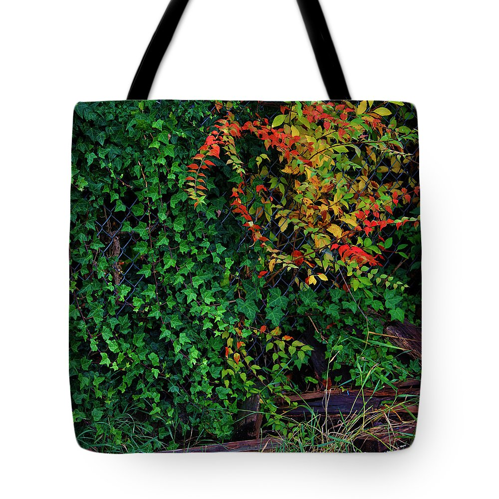 Leaf Tote Bag featuring the photograph Watershed Park Foliage by Jeanette C Landstrom