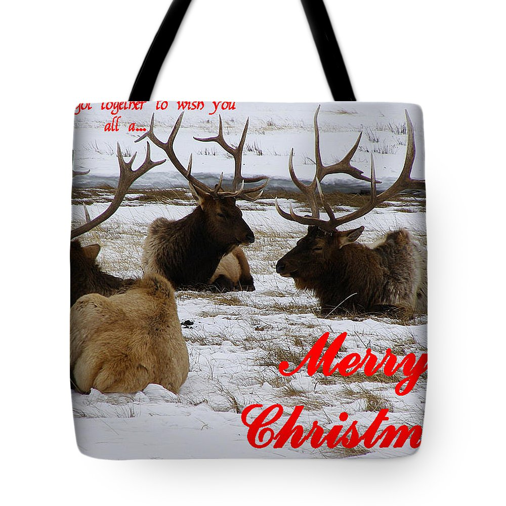 Christmas Cards Tote Bag featuring the photograph We All Got Together Christmas by DeeLon Merritt