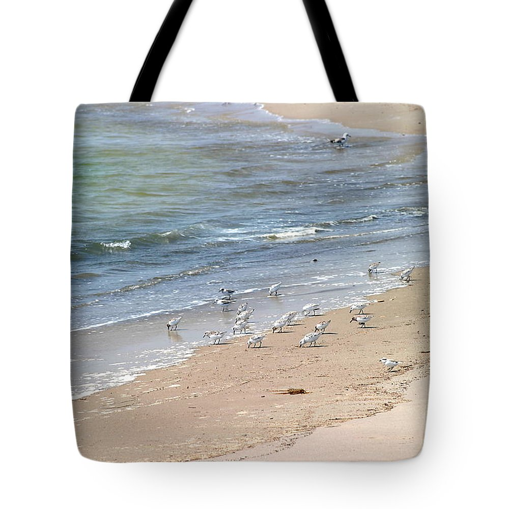 Western Tote Bag featuring the photograph Western Sandpiper by Henrik Lehnerer