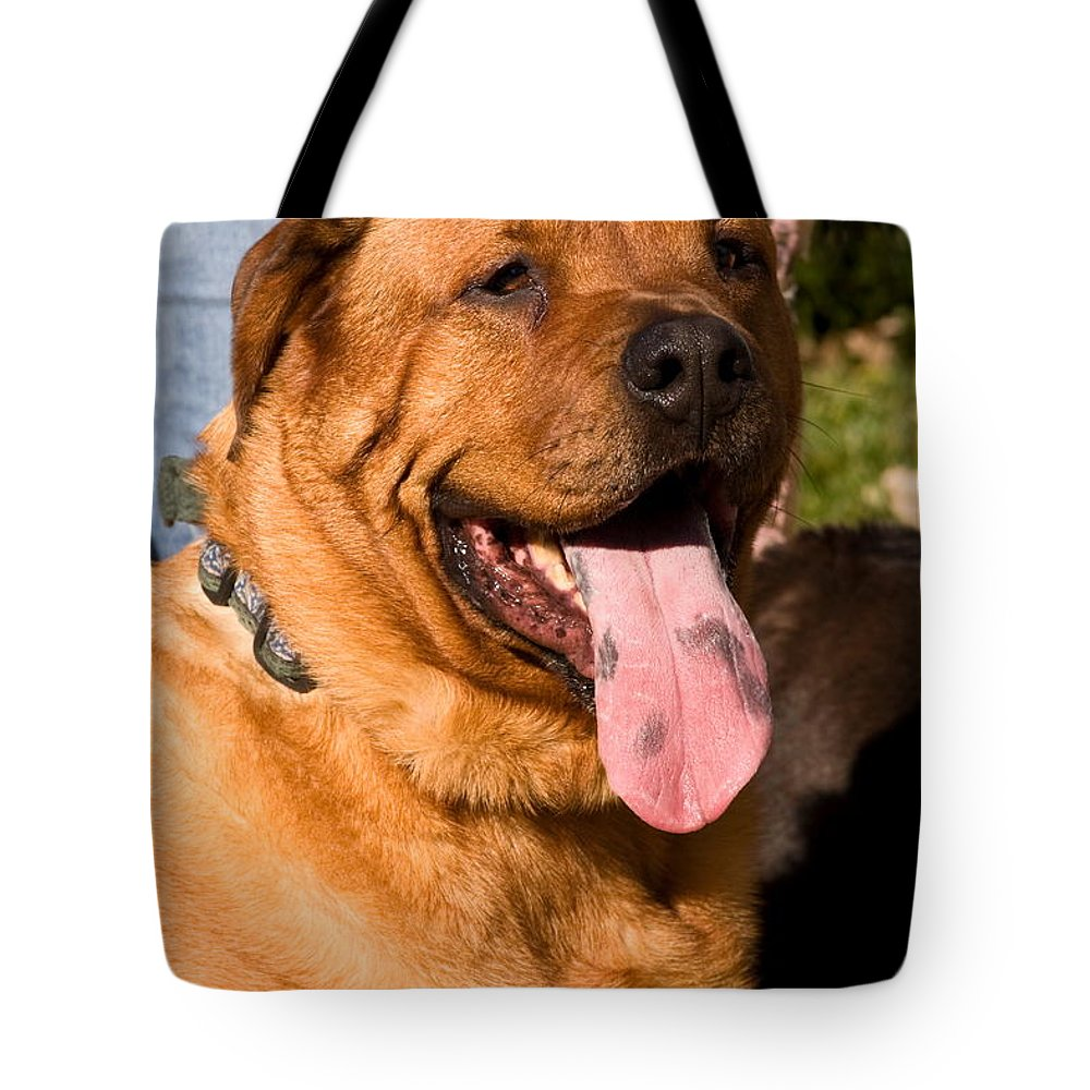 Large Dog Tote Bag featuring the photograph What A Tongue by Sally Weigand