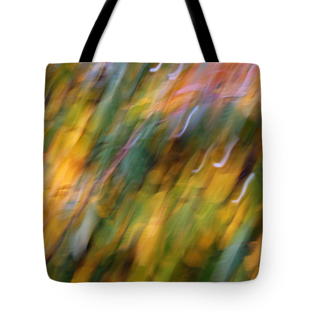 What Was Tote Bag featuring the photograph What Was by Rachel Cohen