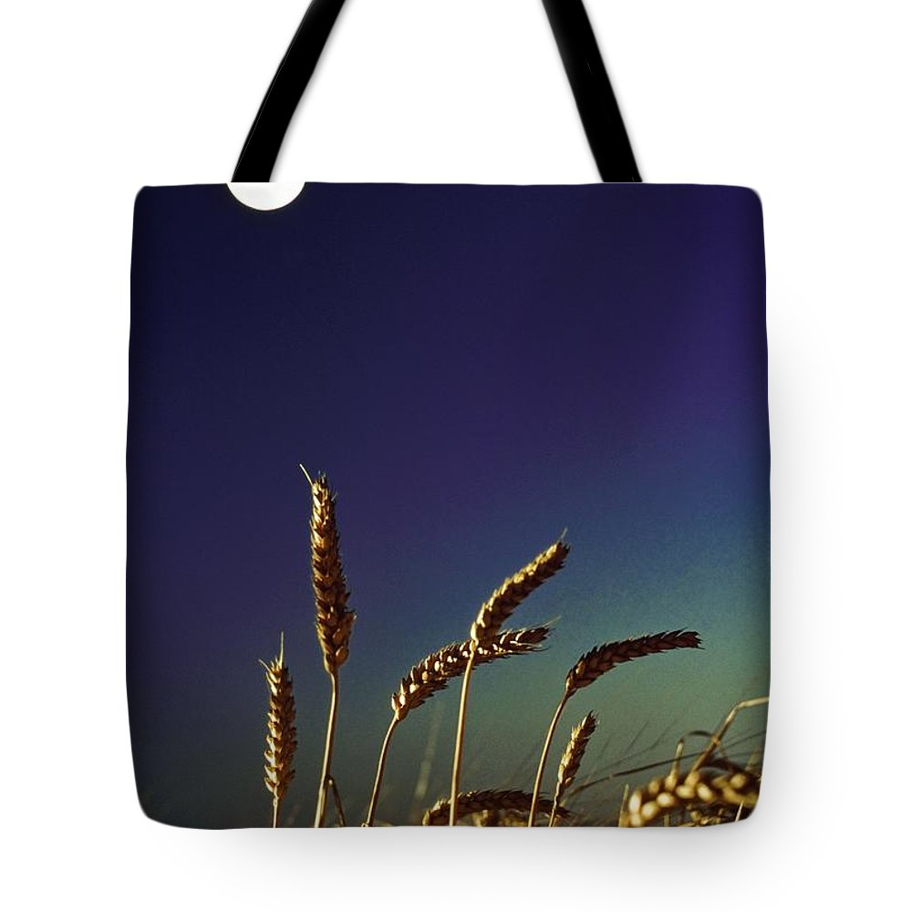 Crop Tote Bag featuring the photograph Wheat Field At Night Under The Moon by The Irish Image Collection