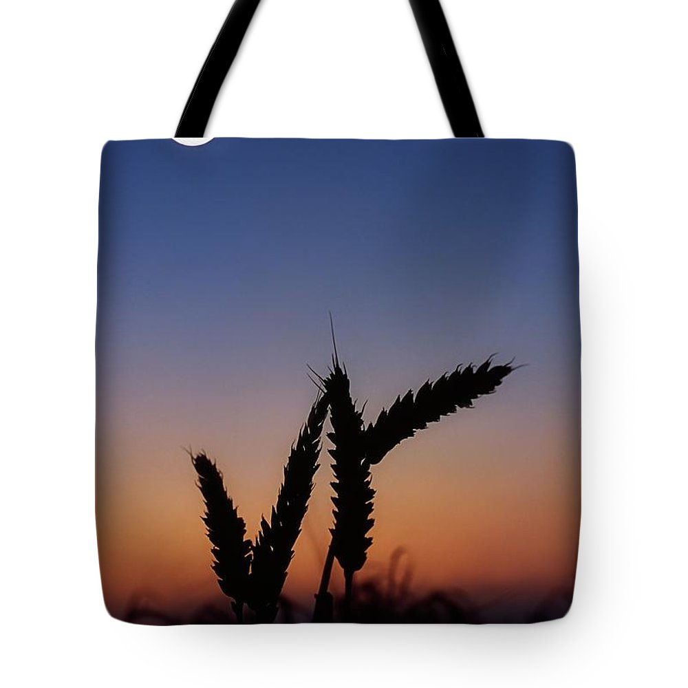 Close Up Tote Bag featuring the photograph Wheat, Harvest Moon by The Irish Image Collection